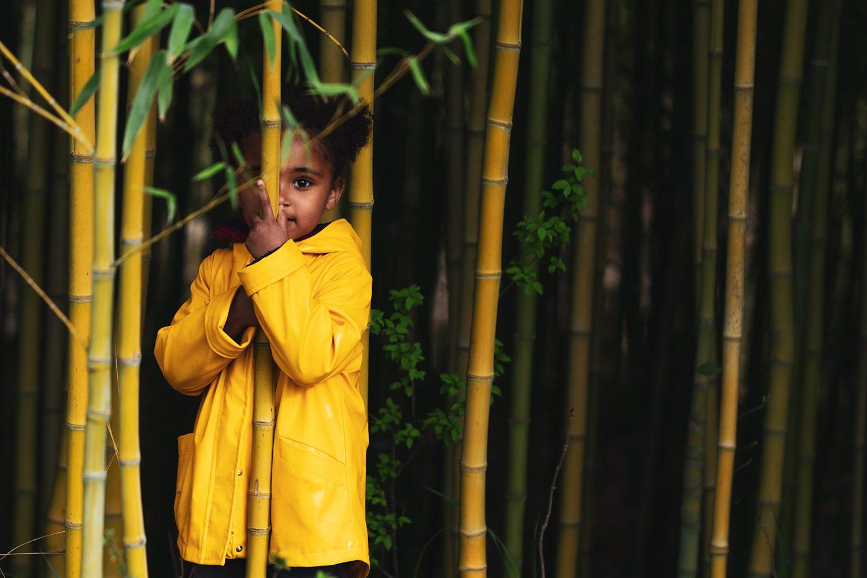 Jardin Zen d'Eric Borja, portrait