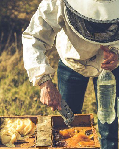 Apiculteur Drôme Ardèche Damien Soubeyrand Apiculture